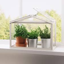 in door plant put in pot vide 15 indoor herb garden ideas kitchen herb planters