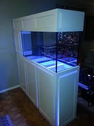 room divider stand room divider aquariums google search reef aquaiums pinterest