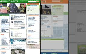 layout web portal student portal information architecture layout and design kanner