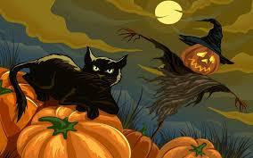 pumpkin cat halloween halloween pumpkins holidays scarecrow