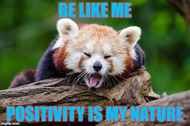 Positive Thinking Meme - image tagged in positivity positive thinking motivation motivated