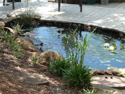 eksterior design cool garden pond ideas attractive garden pond