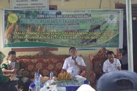 industri jagung bptp gorontalo