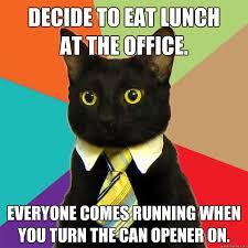 Meme Eat - decide to eat lunch at the office cat meme cat planet cat planet