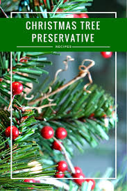 diy homemade christmas tree preservative recipes holidays