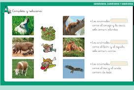 imagenes de animales carnivoros para imprimir herbívoros carnívoros y omnívoros didactalia material educativo