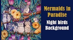 coloring u0027mermaids paradise u0027 night birds coloring alena