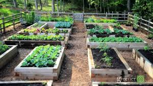 Advantage Of Raised Garden Beds - learn the benefits of gardening in raised beds youtube