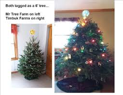 mr tree farm blacklick oh 43004 yp com