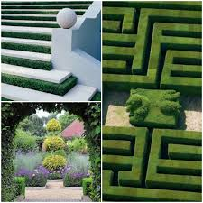 boxwood hedge garden ideas landscape design