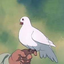 the popular dove gifs everyone u0027s sharing