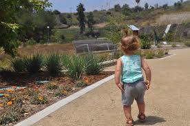 spirit halloween culver city pick fruit in the city stoneview nature center is now open