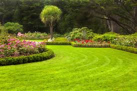 stunning lawn landscaping houston lawn care landscape design