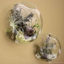 wall bubble glass terrarium succulent planter terrarium for home