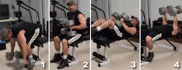 How To Do Dumbbell Bench Press Chest Day 101 Top Dumbbell Exercises The Zone