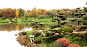 Chicago Botanic Garden Membership Japanese Garden Maintenance Moments Of Ma