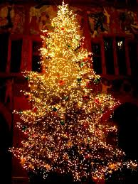 new covenant journal u2020 christmas tree facts