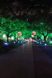 Zoo Lights In Houston by 138 Best Photography Locations Houston Images On Pinterest