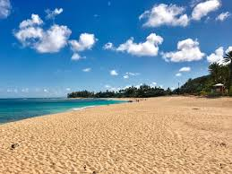 top 5 best beaches on oahu u0027s north shore hawaii real estate