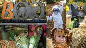 best halloween costumes for family of 4 boo at the zoo philadelphia zoo