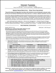 C Level Executive Resume Samples by 90 Best Resume Examples Images On Pinterest Resume Examples