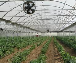 ventilation fans for greenhouses ventilation systems for commercial greenhouses greenhouses nz