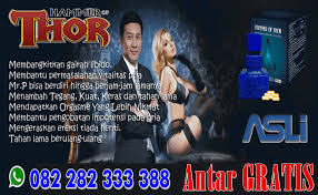 toko sayfu jual hammer of thor di cilegon 082282333388