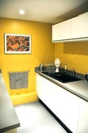 choix de peinture pour cuisine choix de peinture pour cuisine choix de peinture pour cuisine une