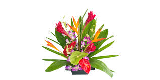 tropical flower arrangements tropical flower arrangement diy hoaloha assortment