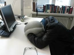 the author his ostrich pillow