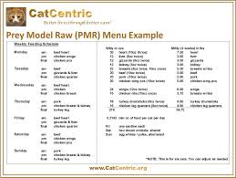 special features one page guides prey model raw pmr menu