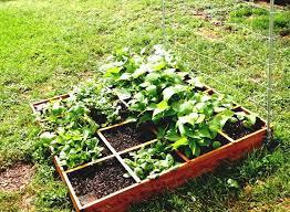 Small Vegetable Garden Design Ideas Vegetable Garden Layout For Beginners Garden And Patio Small
