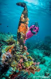 129 best all tings solomon islands images on pinterest solomon