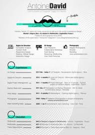 ui design cv pin by fanny a on graphic design resumes pinterest graphic
