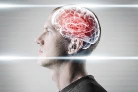 Pictures Of The Human Body Internal Organs Heroin U0027s Destructive Effects On Vital Organs Brain Kidneys And