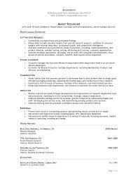 free functional executive format resume template template executive format resume template