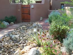native plant seed dry stream bed u0026 courtyard xeriscape flagstaff native plant and seed