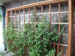 wall trellis design nw classics design build landscaping seattle area