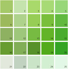 green paint swatches benjamin moore paint colors green palette 11 house paint colors