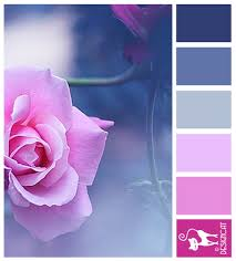 rose mist blue pink pastel designcat colour inspiration