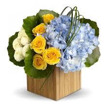 fruits and blooms basket fruit blooms basket giving blooms