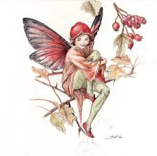 flower fairy 01 by voodoolady87 on deviantart art cicely mary