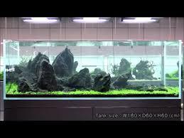 amano aquascape takashi amano beautiful iwagumi style aquascape fish