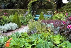 french kitchen garden potager want to buy plant seeds click