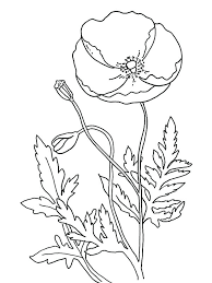coloring pages remembrance day poppy coloring pages pavones1 com