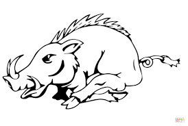 running razorback coloring page free printable coloring pages