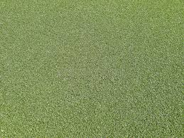 astroturf astroturf background royalty free stock photography image 15764927