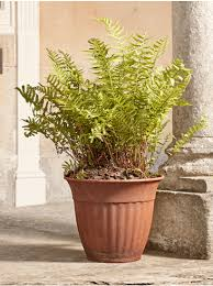 copper plant pots large zinc concrete outdoor planters for sale uk