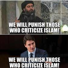 Justin Trudeau Memes - 272 best oh canada images on pinterest justin trudeau