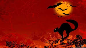 black cat halloween wallpaper wallpaper halloween cat